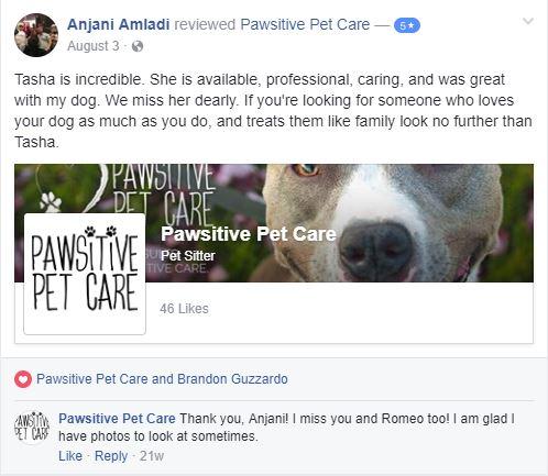 Anjani Amladi Review.JPG