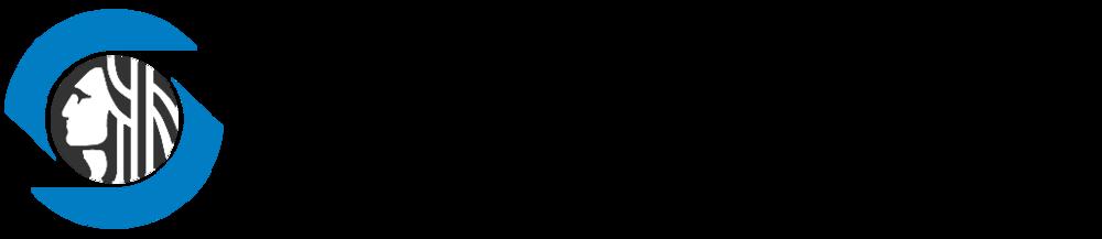 HSD Logo 2015 Transparent.png