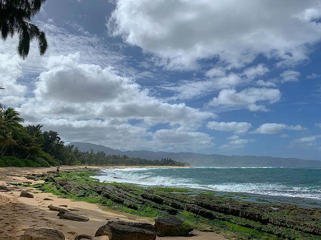 North shore kinda day #alohakeakua #broll #onlocation #videographerlife