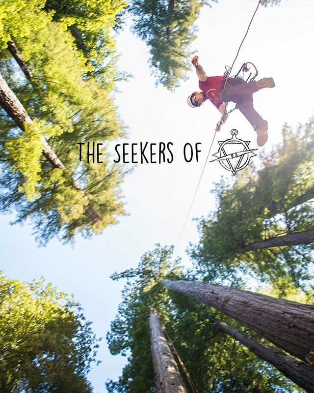 #treeclimber / #skywalker @richarde.kts  #theseekersof #Cali #redwoods #climb #adventure #porthuronphotographer #trees