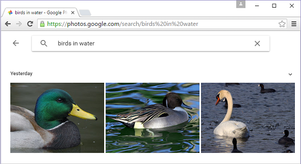 Google+ Photo Search… it's, uh, scary impressive. And useful.