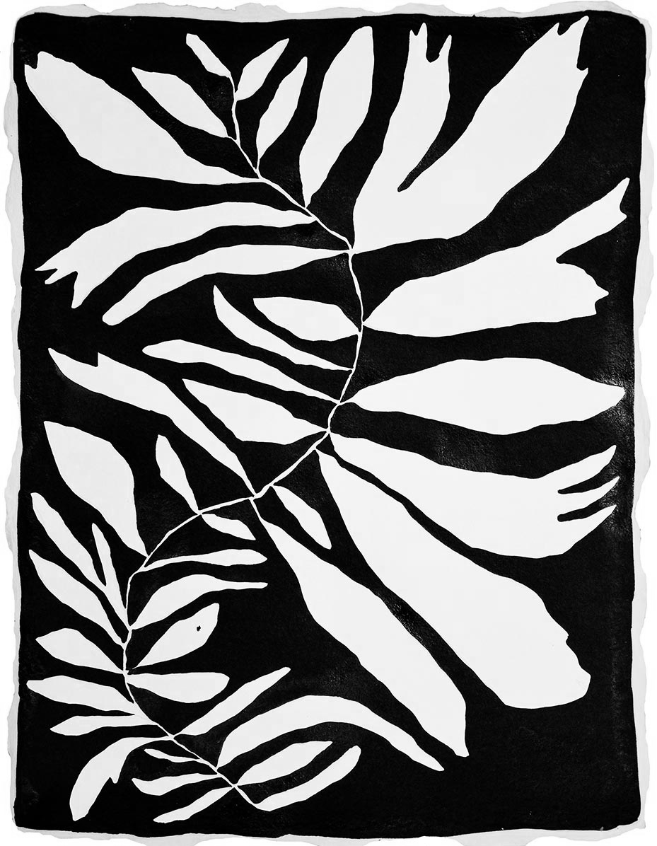 Sea Life One, sumi ink print by Kate Roebuck