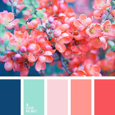 A sample of spring colours. Image via  Pinterest