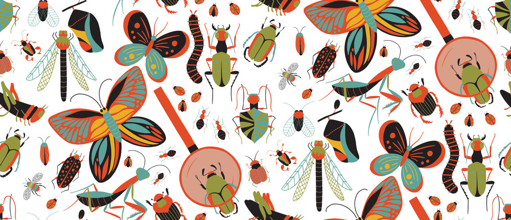 Bug Life - Tempest.jpg