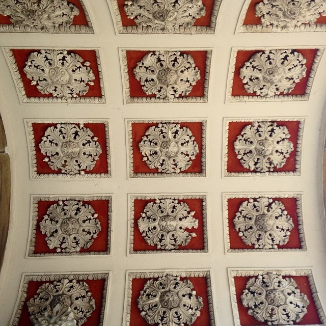 One of many #patterns found in one ceiling of the Dolmabahçe Palace in #istanbul #turkey #comeseeturkey #lovethisplace