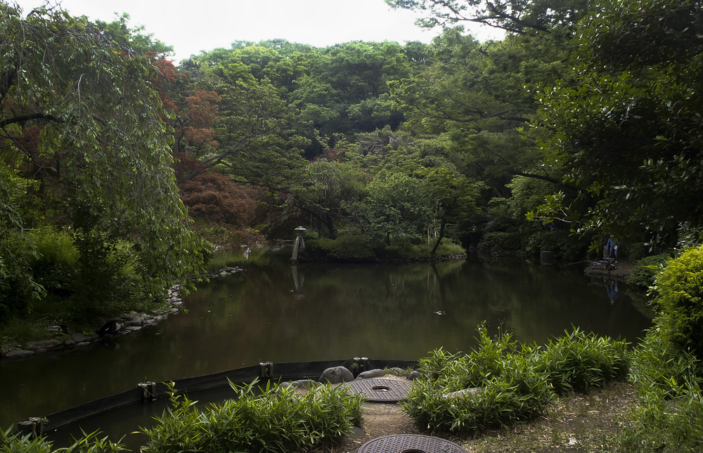 A man fishes in a pond May 25, 2015, at Arisugawa Park, Minato, Japan. The park covers an area of 67,131 square meters. (U.S. Air Force photo by Senior Airman David Owsianka/Released)