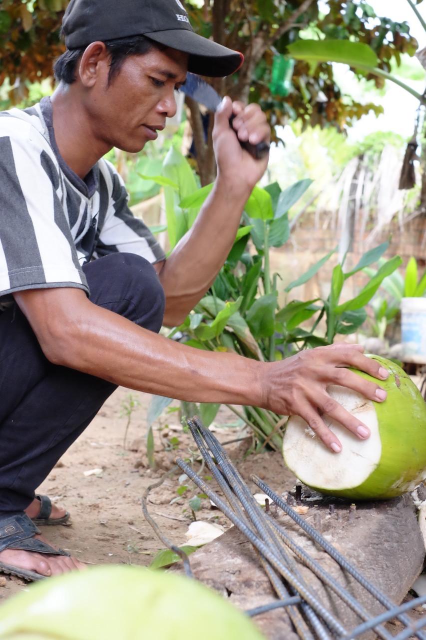 Coconut Hunting - 04.jpg