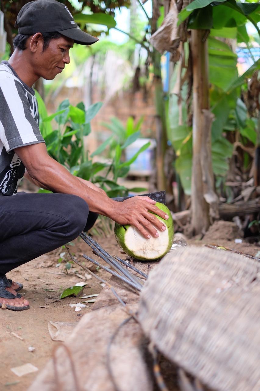 Coconut Hunting - 03.jpg
