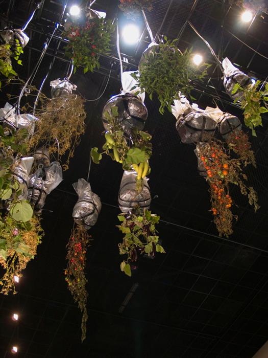Alicia Frankovich,  Medea  2010, installation view, commissioned by the Australian Centre for Contemporary Art, Melbourne