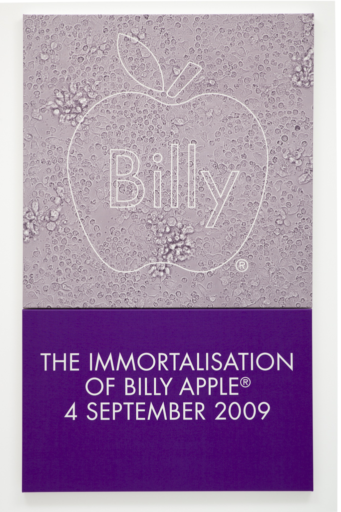 The Immortalisation of Billy Apple® 4 September 2009