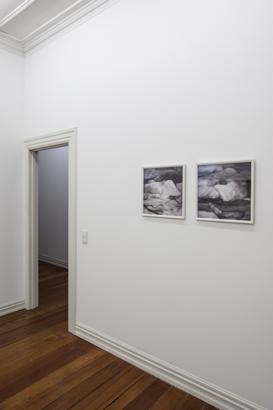 Installation shot; Pointing at Trees 2012