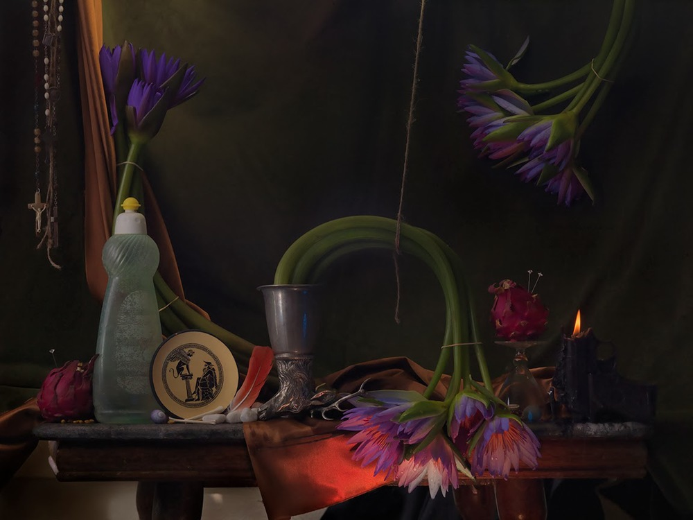 Still Life with Waterlilies, Dragon Fruit and Sphynx, Ripiro 2014