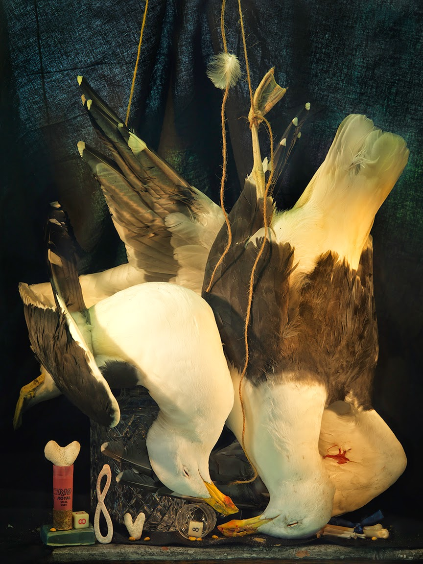 e-Two dead Gulls, Coral Hearts and Lemniscate, Ripiro 2014_1939 copy.jpg