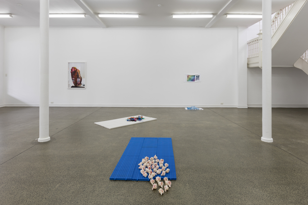 Alicia Frankovich The Female has Undergone Several Manifestations installation view