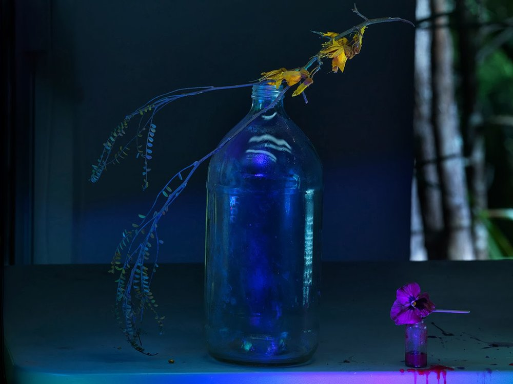 e-Colin's Flagon with Precarious Kowhai Flowers and a Pansy McCahon 2013_1201.jpg