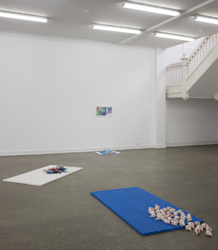 Alicia Frankovich,  The Female has Undergone Several Manifestations , installation view, Starkwhite, 2016