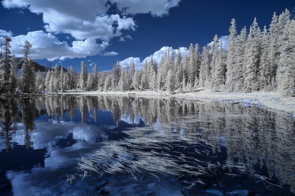 Mirror Lake In IR