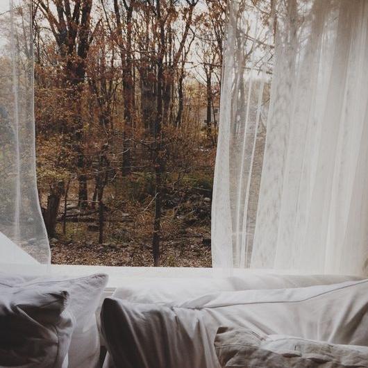 Autumn14.jpg