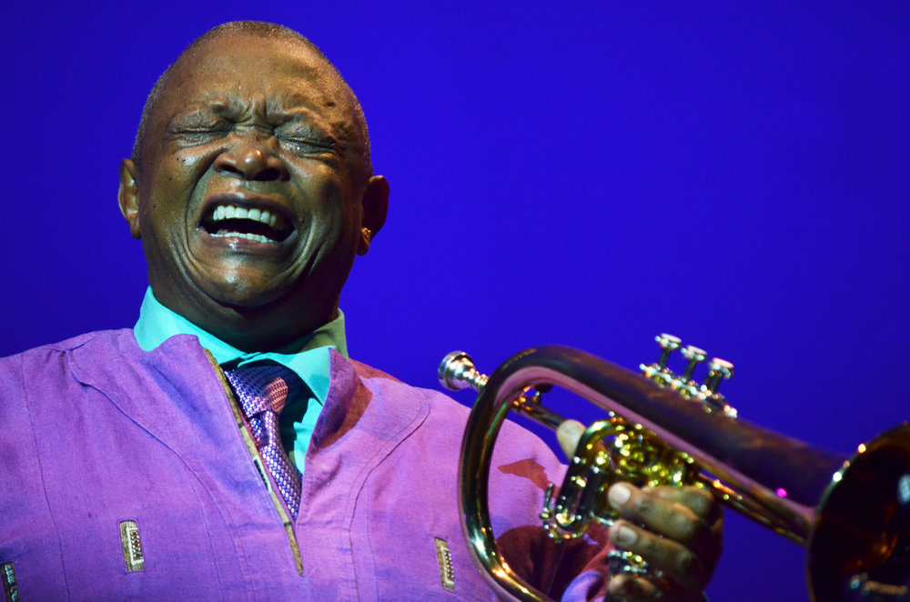 Hugh Masekela, WOMADelaide 2013.
