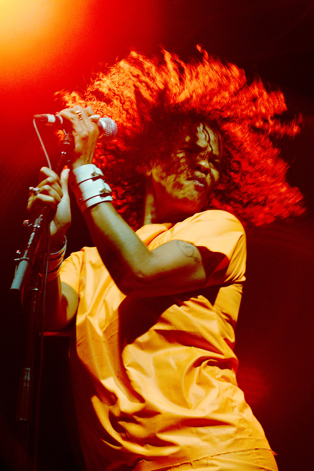 Neneh Cherry, WOMADelaide 2015.