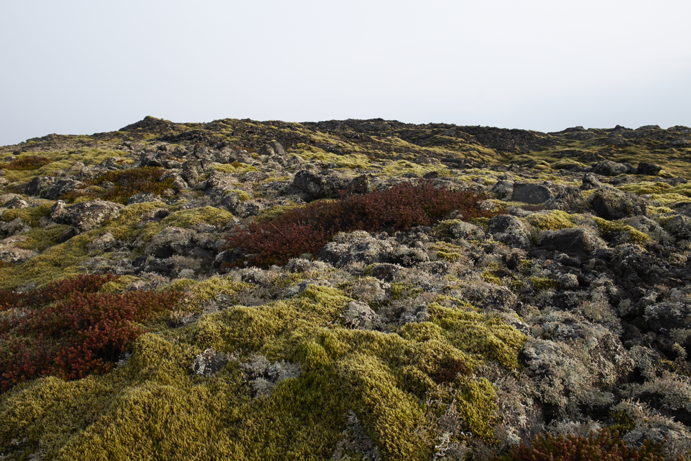 Lunar landscapes in Iceland
