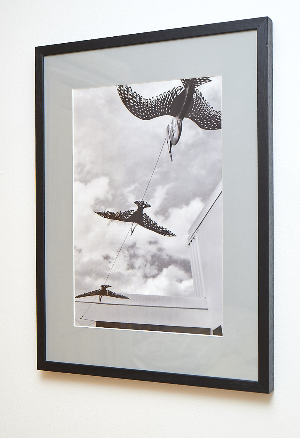 "Flight of Fancy Another image from Napier.  Shot on black & white film, and framed in a black frame with grey border.  Frame Size approx. 25 x 18.5""  COST £40.00"