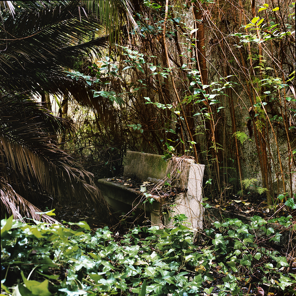 maite jardin palacio.jpg