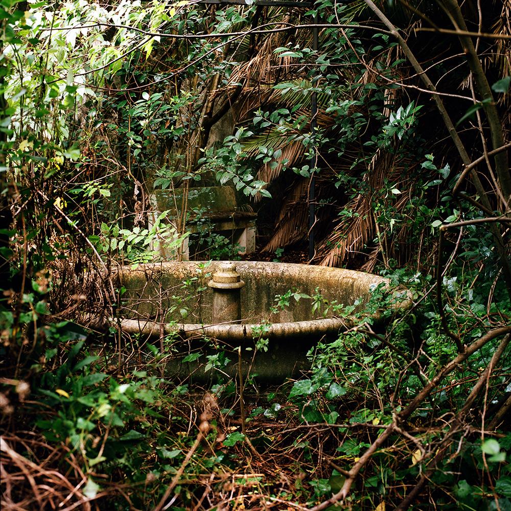 maite jardin palacio2.jpg