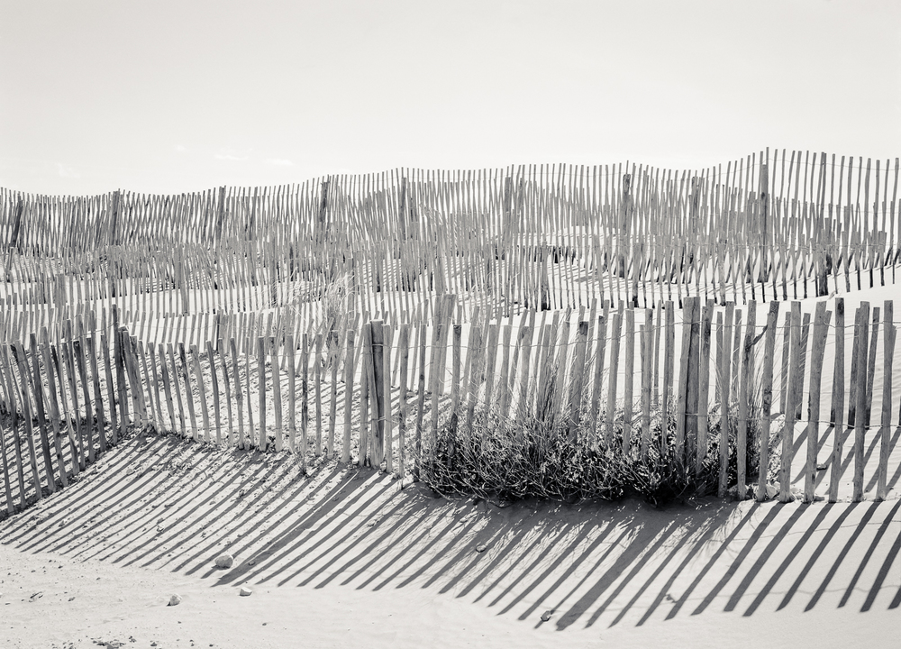 Camargue-76.jpg