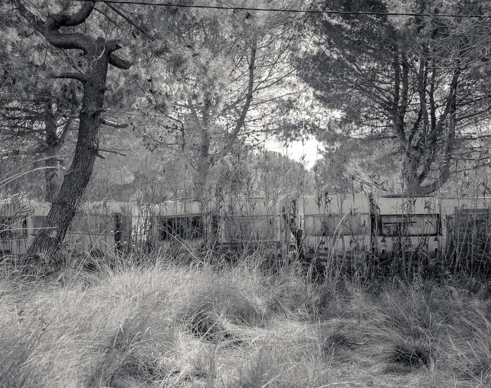 Camargue-77.jpg