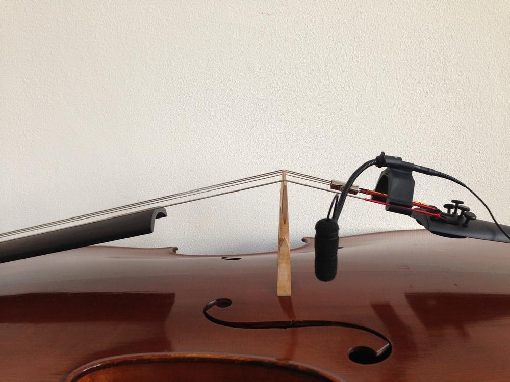 DPA-4099-cello-THE-WONG-JANICE-2.JPG