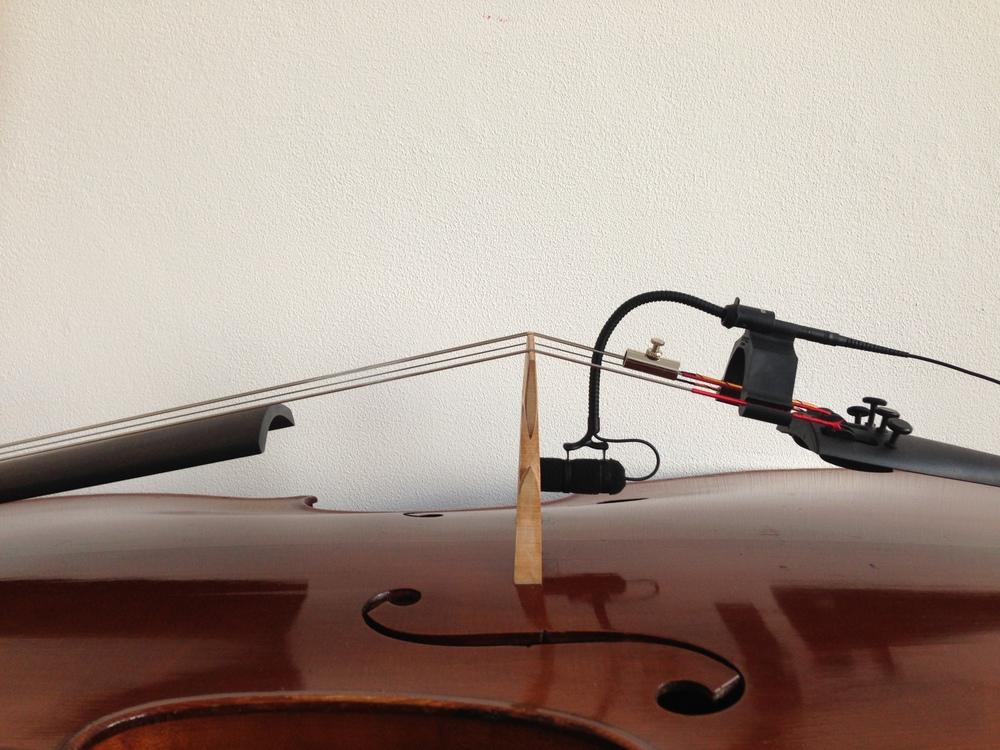 DPA-4099-cello-THE-WONG-JANICE-1.JPG