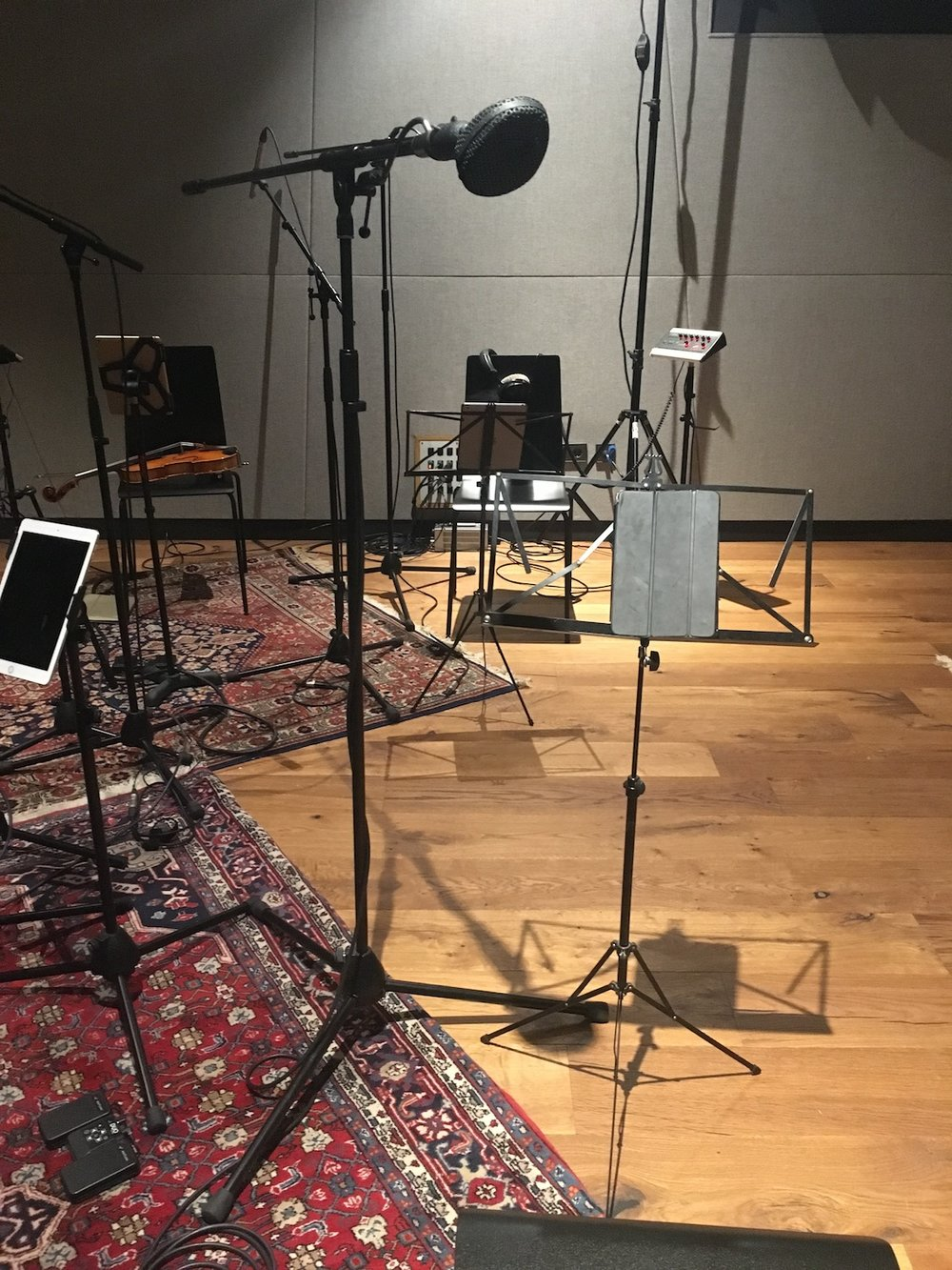 Yung-Nnelg-Red-Bull-Studios-uncut-coles-4038-ribbon-microphone-The-Wong-Janice.jpg