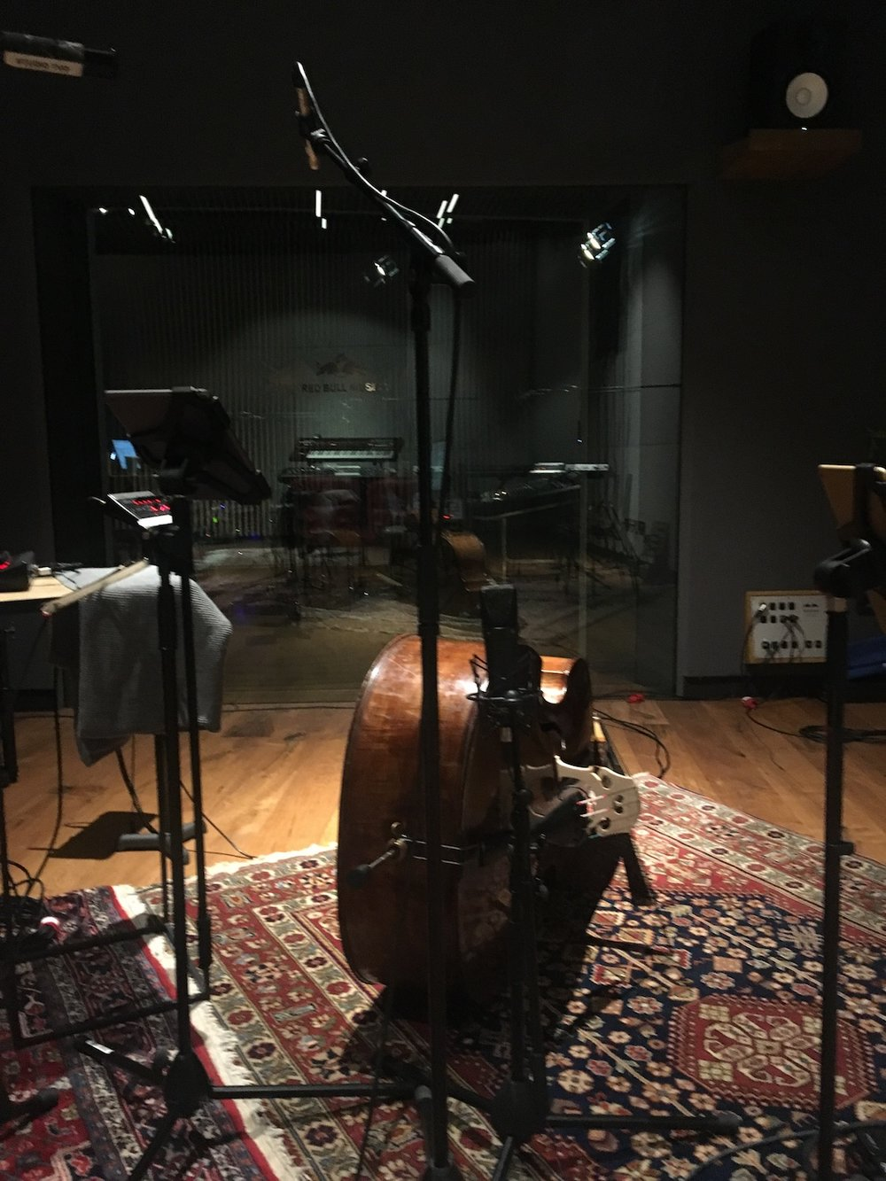 Yung-Nnelg-Red-Bull-Studios-uncut-music-video-double-bass-U87-C451-microphone-The-Wong-Janice.jpg