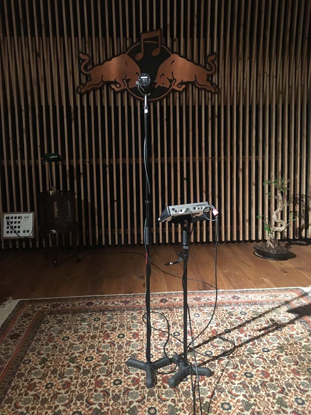 Yung-Nnelg-Red-Bull-Studios-uncut-vocals-Sennheiser-SM7B-microphone-The-Wong-Janice.jpg
