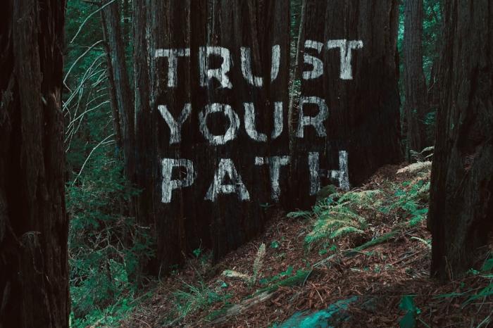 Trust_still2mb.jpg