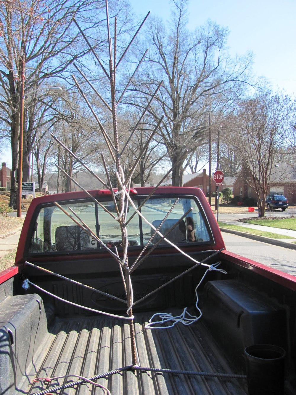 Transporting Bottle Tree 1.jpg