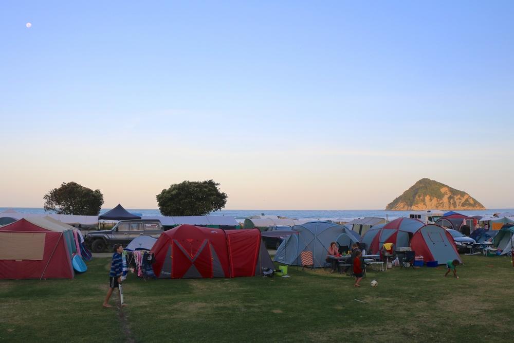 Campground at Anaura Bay