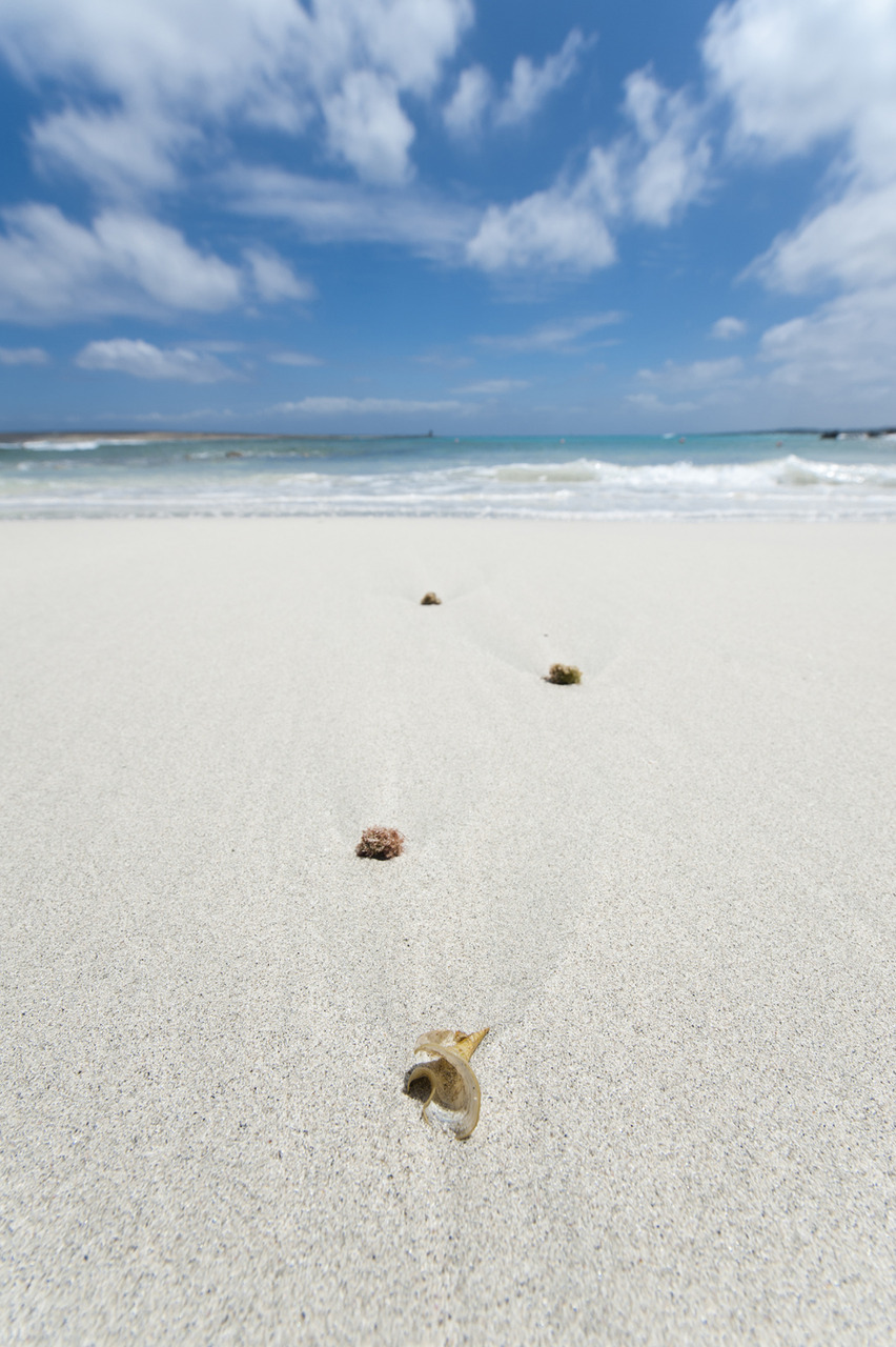Reiser til Sardegna idag og blir en uke. Kameraet er selvfølgelig med ;)