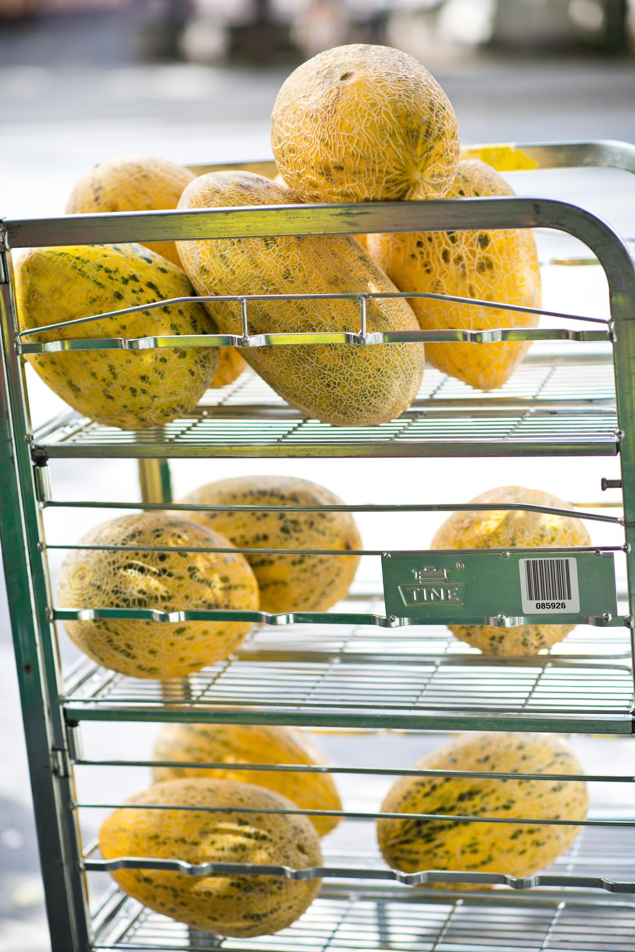 Huge melons, 187/366.