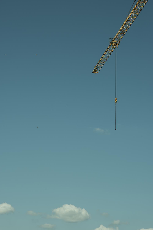 Crane, 139/366.