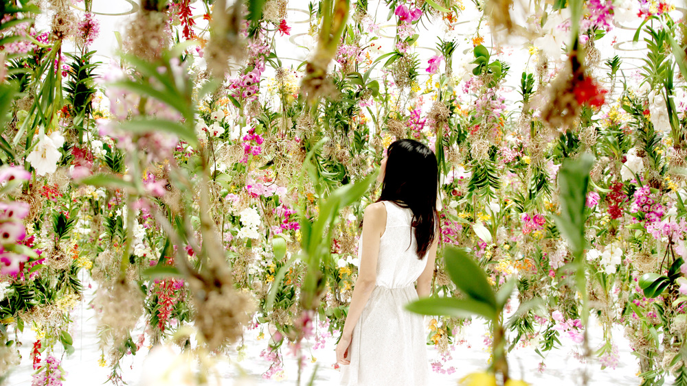 floating flower garden  by the japanese artists  teamlab .  PHOTOGRAPHY COURTESY OF teamlab.