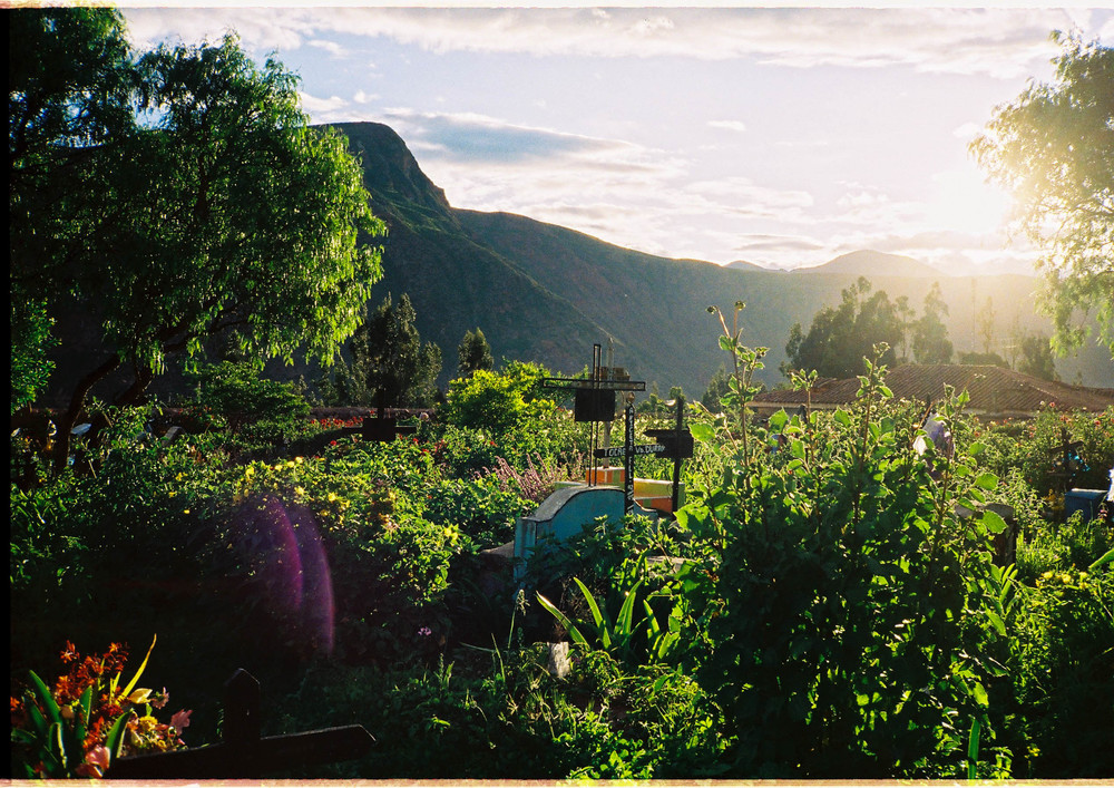 Secret gardens. Urubamba, Cusco, Peru. February, 2015