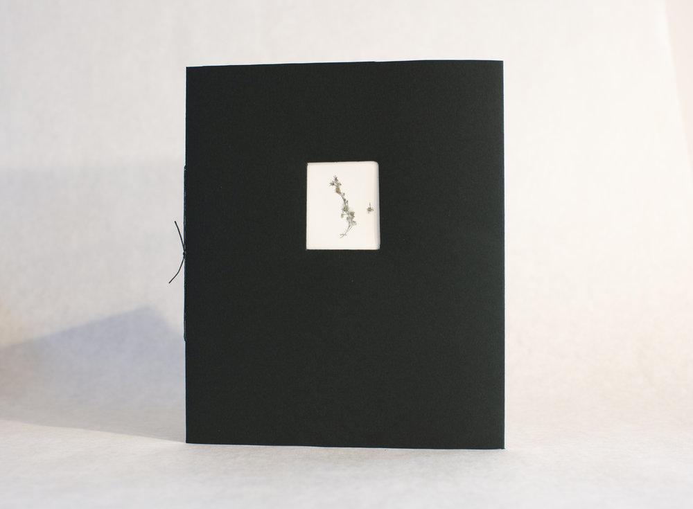 """Letterpress book """"Silver Glinting""""."""