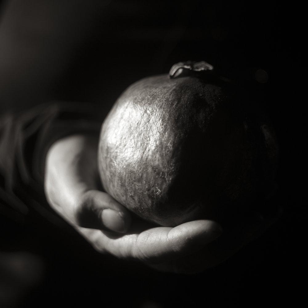 Anne's Pomegranate