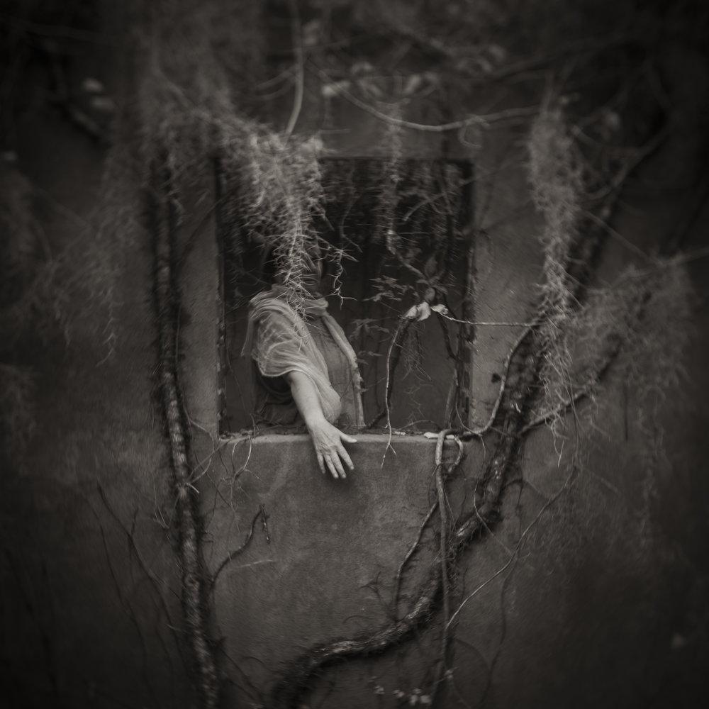 Anne in the Window