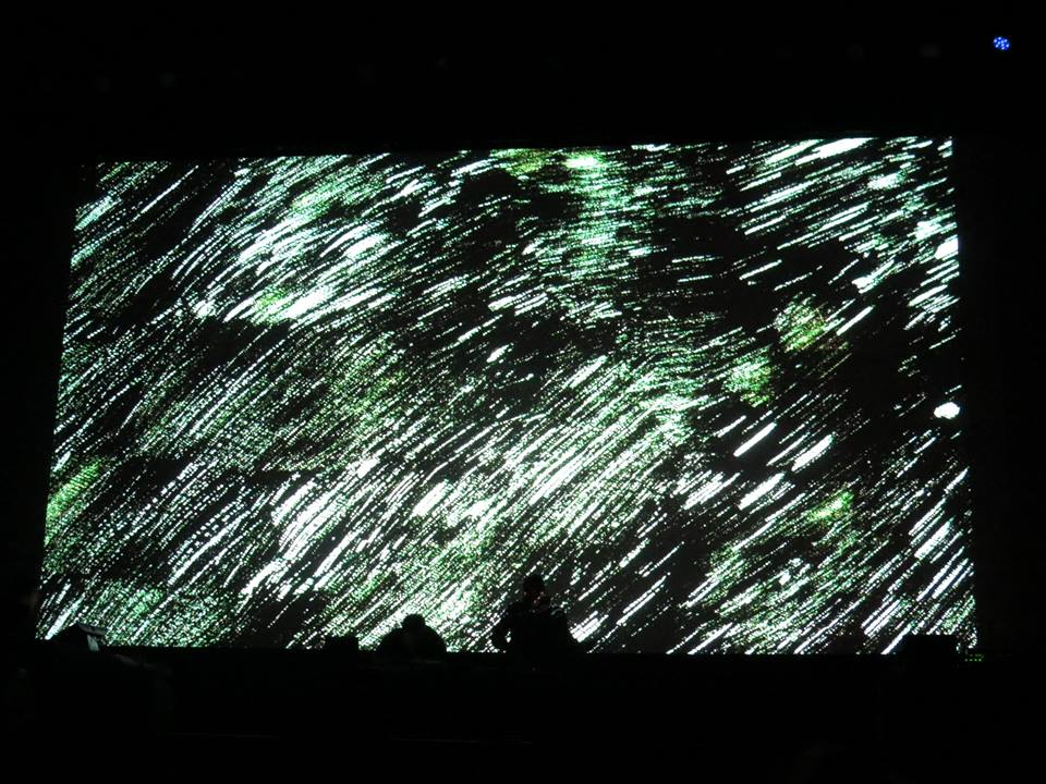 Chambers with visuals by Endtask, live at Eye Of The Storm VII, January 2015 | photo by  Siadic