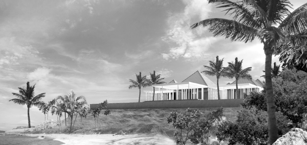 "Cayman Island ""Good to be King"" Project Architect: Richard Cho. Rendering by: Alexi Adamstein. Completion date: 2017"