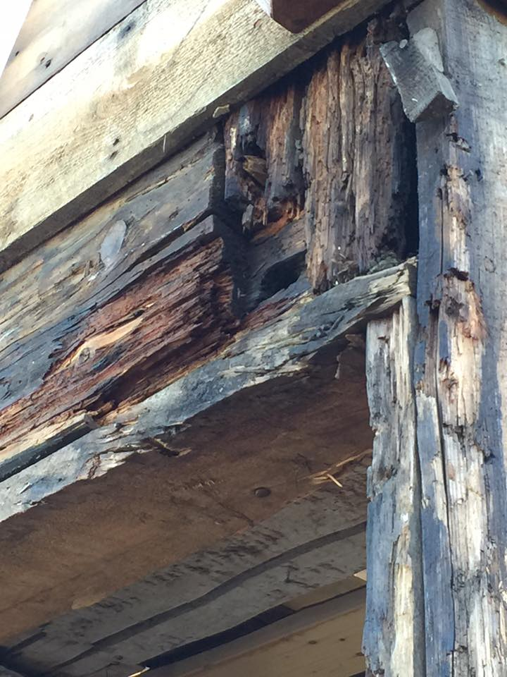 Original damaged framing and structure.