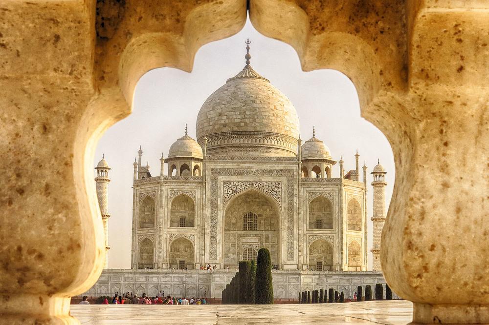 IMG_5701_Taj baby Taj.jpg